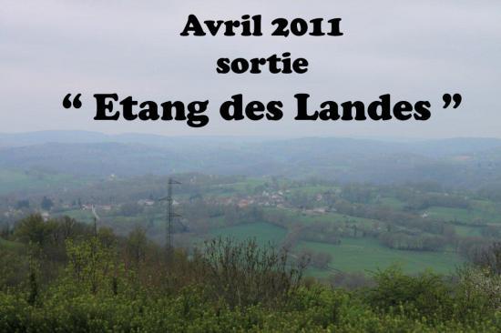 sortie Etang des Landes 2011